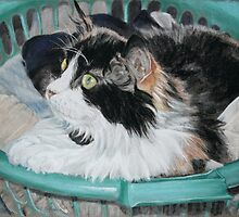 Washing's Done. by Olga-Parr