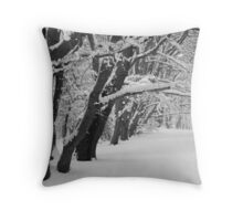 Epping Forest under Snow Throw Pillow