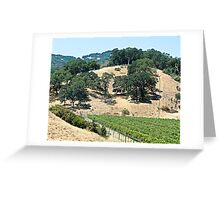 A California Vineyard During the Drought Greeting Card