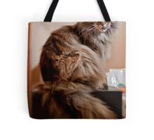 Whaddya mean it's not for sitting on?? Tote Bag