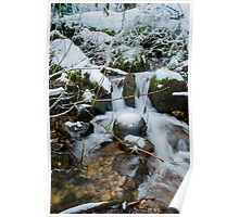 Snowy Creek Poster
