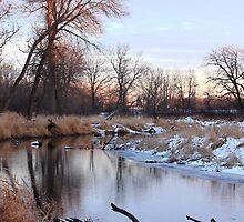 River Scenery by AbigailJoy