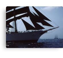 """"""" The Power Of Sail """" Canvas Print"""