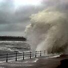 Seastorm by Paul McGuire