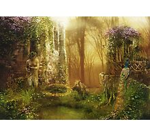 Untamed, Large Scale Photographic Print