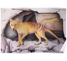 Tasmanian Tiger (Thylacine) Poster