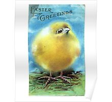 Easter Greeting Chick Blank Greeting Card Poster