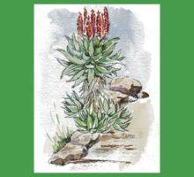 Aloe ferox in my garden Kids Clothes