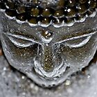 Iced Buddha - 2 by nwexposure