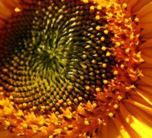 Sunny Sunflower Art Sticker