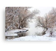 Winter Wonderland 01 Canvas Print