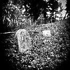Forgotten Few by ivynev
