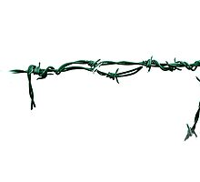 Barbed Wire Series 1 by Matt Hill