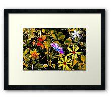 Butterflies in a flower patch Framed Print