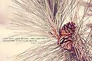 Look Deep Into Nature... by KBritt