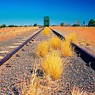 Train to nowhere by AndyFeltonPix