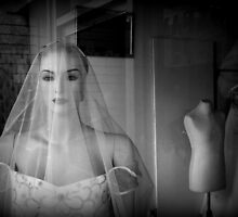 Junk Store Bride by Ed Sweetman