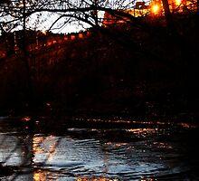 Creekside Embankment by Sean Ross
