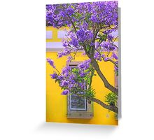 jacaranda Greeting Card