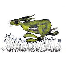RUNNING HARE  Photographic Print