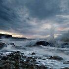 splash! by paul mcgreevy