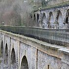 Aqueduct and Viaduct, Chirk by Catherine Longhurst