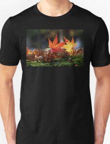 Autumnal beauty 4 T-Shirt