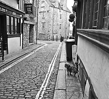 Narrow Street - Winter in Plymouth 4 by magicaltrails