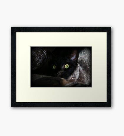 Sneak Attack Framed Print