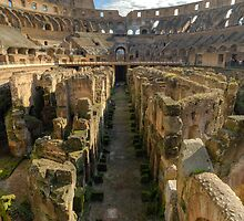 Hypogeum of the Colosseo by nickdeclercq
