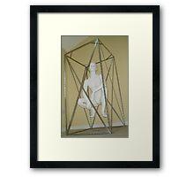 Suspended Animation Framed Print