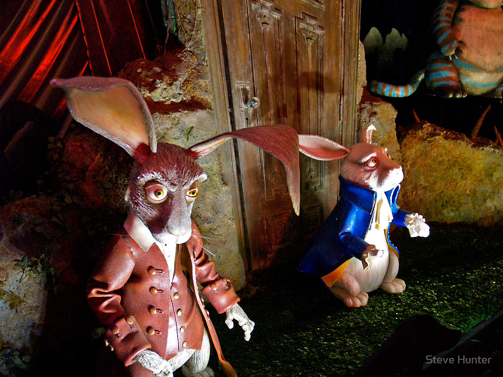 White Rabbit by Steve Hunter