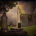 Irish Cemetery by EmvandeBee