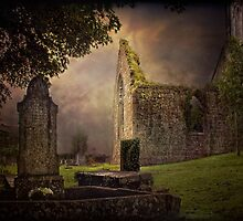 Irish Cemetery by EmvandeBee