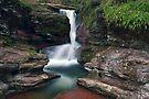 Adams Waterfall Overature by Gene Walls