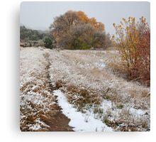 Trail to Hog Canyon Canvas Print