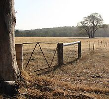 Following Fences by WendyJC