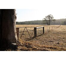 Following Fences Photographic Print