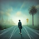 The pilgrimage by Adrian Donoghue