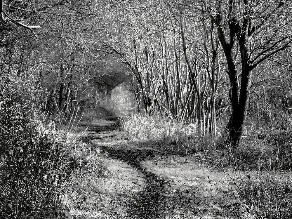 Walk Awhile by John Dunbar