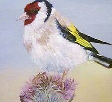 Goldfinch by GypsyCanadian