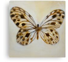 butterfly study Canvas Print