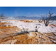 Mammoth Hot Springs 2 Photographic Print
