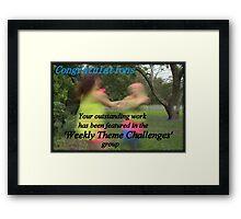 Banner Challenge Framed Print