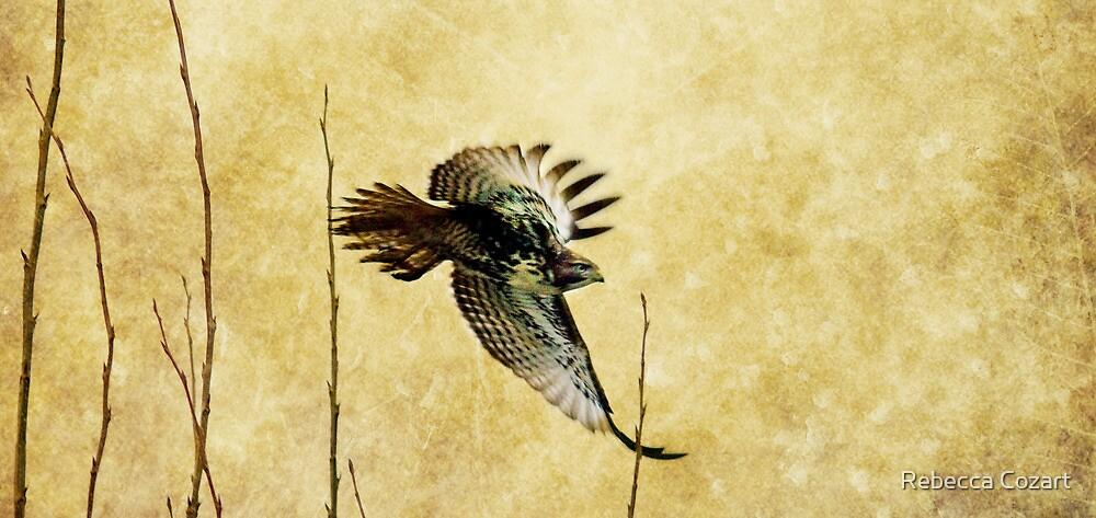 The Getaway by Rebecca Cozart