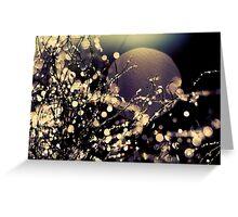 Moonrise in Fairyland Greeting Card