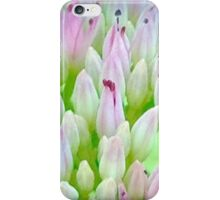 Pink And Green Summer Flowers iPhone Case/Skin