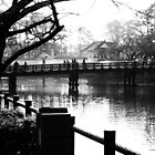 Bridge to Odawara Castle by Fike2308