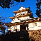 Odawara Castle  by Fike2308