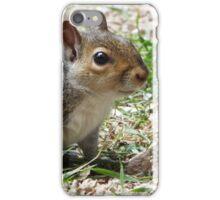 Smiling Squirrel iPhone Case/Skin